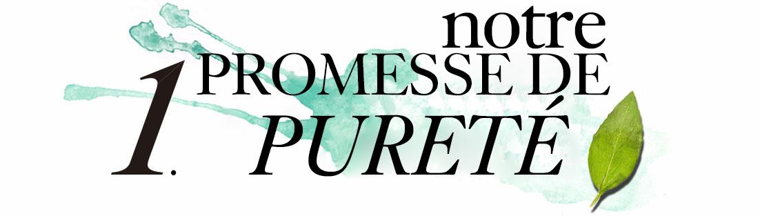 1. Notre promesse de pureté